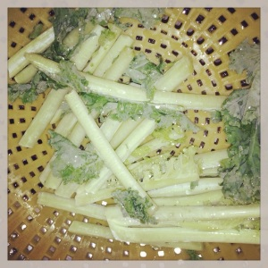 Kale stems! Woohoo!...Too much??
